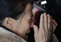 Máy bay chở 239 hành khách mất tích tại vùng không lưu Việt Nam