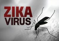 Bác thông tin có bốn người nhiễm virus Zika ở Khánh Hòa