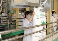 Ngân hàng Nhà nước thông qua đề xuất 'cứu' Hoàng Anh Gia Lai