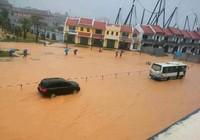 Mưa lớn ngập cục bộ, Quảng Ninh khẩn trương ứng phó