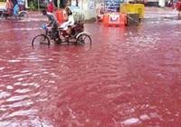 Xuất hiện dòng sông máu tại thủ đô Bangladesh