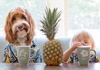 Tan chảy với cặp đôi bé-cún cực đáng yêu