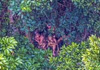 Phát hiện bộ lạc bí ẩn trong rừng Amazon