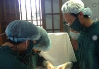 Mổ cấp cứu 1 chiến sĩ viêm ruột thừa cấp tại đảo Bạch Long Vĩ
