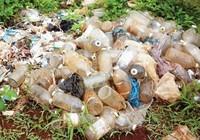 Ô nhiễm dioxin từ nhà máy xử lý rác thải