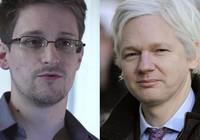 Pháp cân nhắc cho 'người thổi còi' Snowden và Assange tị nạn