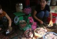 Kinh hoàng cá ươn, cá thối được phù phép thành…đặc sản