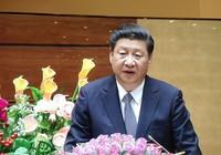 Ông Tập Cận Bình phát biểu 20 phút tại Quốc hội Việt Nam