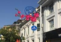Chiêm ngưỡng các mẫu trang trí phố đạt giải của Hà Nội