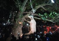 Clip treo trâu đến chết ở lễ hội là hình ảnh cũ