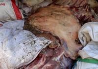 Bắt gần 5 tấn thịt heo thối trước khi bán tại chợ công nhân