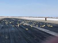 Máy bay Nga bung cửa, hơn 3 tấn vàng rơi xuống đất