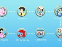 Clip: Dùng smartphone để truy xuất nguồn gốc thịt heo