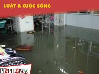 Ở nơi cư dân thành phố 10 năm sống trong cảnh ngập lụt