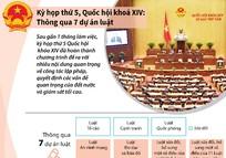 Kỳ họp thứ 5, Quốc hội khóa XIV: Thông qua 7 dự án luật