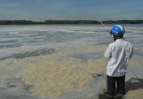 Một đoạn sông Thị Vải nổi bọt màu vàng