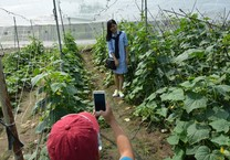Du lịch nông nghiệp công nghệ cao hút khách