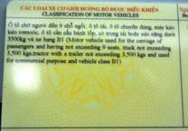 Bạn biết gì về hệ thống giấy phép lái xe?