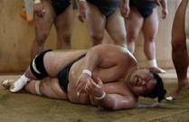 Sự thật ít biết về cuộc sống của võ sĩ sumo