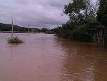 Bốn người chết, gần 2.000 ngôi nhà ngập sâu do mưa lũ