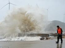 Chùm ảnh bão Soudelor tàn phá miền Đông Trung Quốc