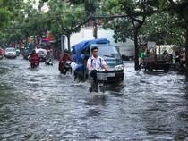 Mưa nửa tiếng đường ngập như sông, xe cộ bì bõm trong nước cống