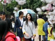 Thiếu nữ Hà Nội du xuân, xin chữ đầu năm