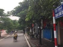 Hà Nội gắn biển phố nhà văn Nguyễn Đình Thi và nhạc sĩ Trịnh Công Sơn
