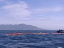 Viện Hải dương công bố kết quả khảo sát...