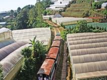 Tuyến xe lửa cổ đưa khách khám phá Đà...