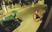 Camera ghi cảnh taxi trộm cây cảnh trong đêm