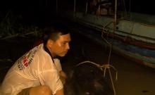 Ngư dân bắt được cá lăng hơn 100kg quý hiếm trên sông Tiền