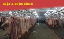 Lò mổ Xuyên Á có độc quyền mổ heo cho chợ Hóc Môn?