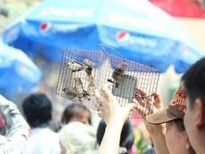 Tận diệt chim sẻ mùa Vu lan