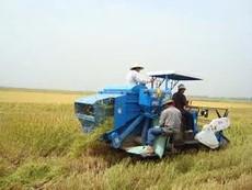 Không nhịn được cười với máy gặt lúa thế hệ mới