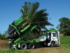 Trố mắt với kỹ thuật trồng cây ở Úc