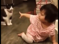 Cười tít mắt với em bé bị chú mèo chơi khăm