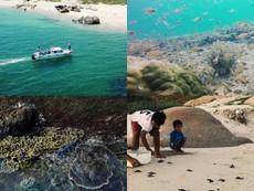 Lặng người trước vẻ đẹp hoang sơ của Hòn Cau