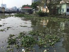 Sông Sài Gòn ngập tràn rác thải