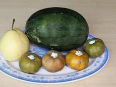 Ba bí quyết giữ trái cây tươi lâu trong ngày tết