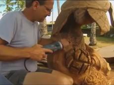 Đây là cách nghệ nhân tạo ra 1 con rùa gỗ