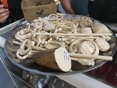Bắt giữ lô hàng nhẫn, vòng đeo tay làm từ ngà voi