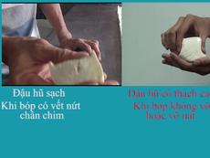 Cách đơn giản phát hiện đậu hũ có chứa thạch cao