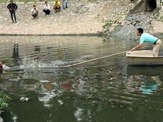 Clip bị truy bắt, người đàn ông nhảy xuống sông Tô Lịch