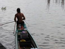 Cá, rùa vừa phóng sinh đã bị 'vợt' ngay trên sông