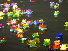 Clip: Hoa đăng rực sáng trên sông Sài Gòn