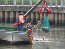 Bất ngờ với lượng cá chết hơn 70 tấn ở kênh Nhiêu Lộc - Thị Nghè