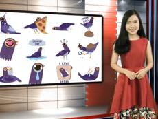 Vui Độc Lạ: Icon chim tím làm 'điên đảo' cộng đồng mạng