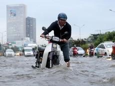 Mưa kết hợp triều cường nhấn chìm đường Nguyễn Hữu Cảnh