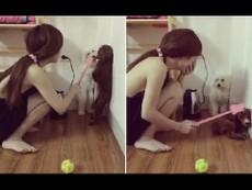 Clip cô gái phạt chó cưng khiến dân mạng phát sốt